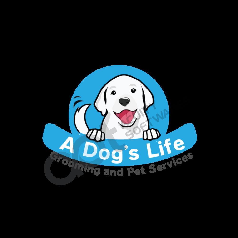 dog-life